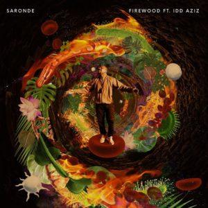 Saronde - Firewood - Idd Aziz